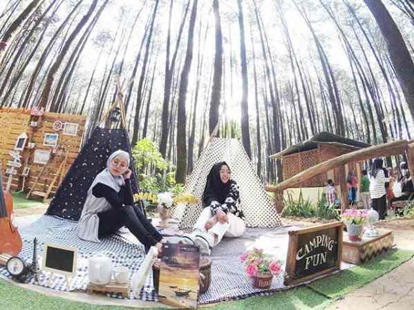 Taman Wisata Alam Gunung Pancar Sentul Bogor Camping Ground