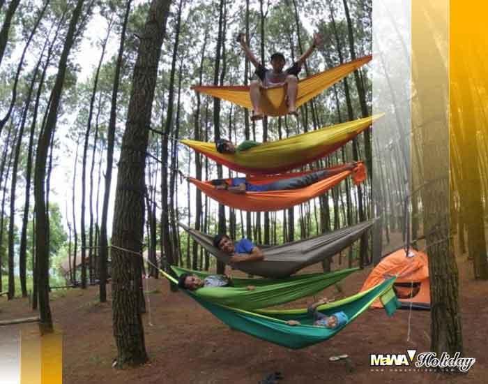 Bersantai di hutan pinus jogja