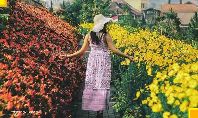 Rainbow garden spot instagramable